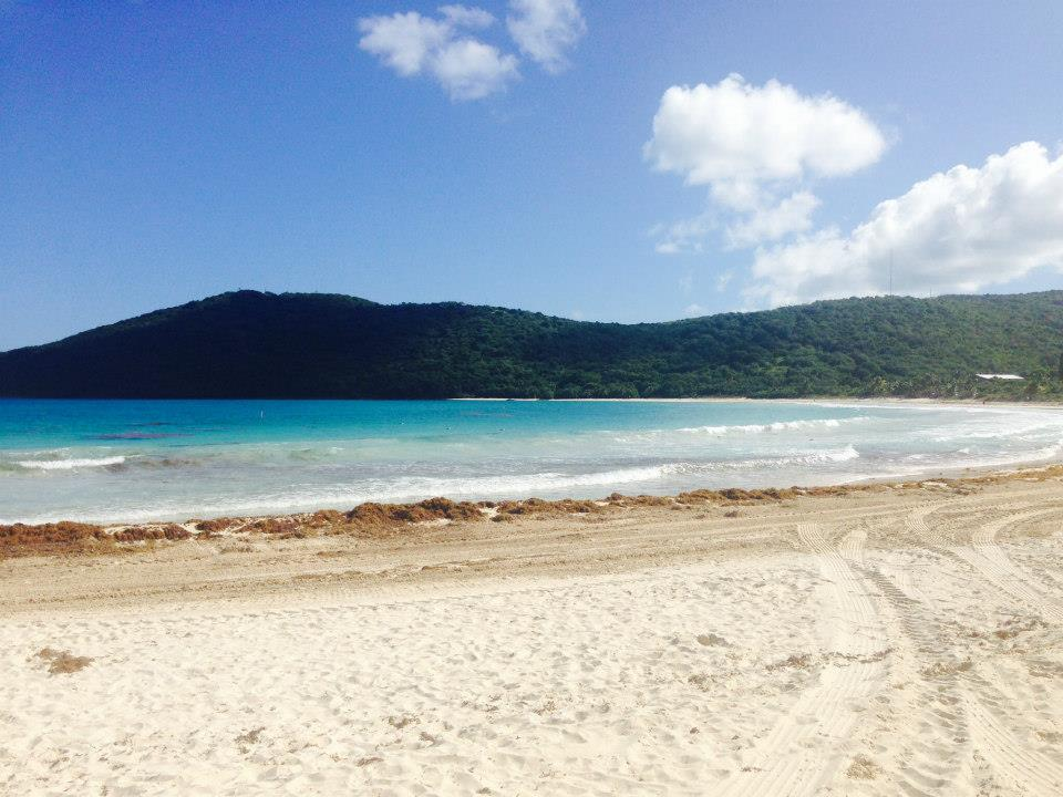 Playa Flamenco: The best of the lot.